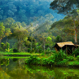 by Harry Hariyantodk - Landscapes Travel