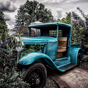 Going Green by Scott Bryan - Artistic Objects Still Life ( sky, truck, neat, green, still life, plants, landscape, antique )