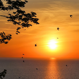 Try Try Again 8 by Terry Saxby - Landscapes Sunsets & Sunrises ( canada, terry, meneset, huron, sunset, goderich, ontario, lake, saxby, nancy )