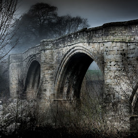 Old Lunn Bridge by Darrell Evans - Buildings & Architecture Bridges & Suspended Structures ( water, dales, crossing, old, grass, stone, yorkshire dales, yorkshire, fog, d7100, trees, lunn, bridge, kirby longsdale, nikon, river, mist )