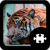 Game Tiger Jigsaw Puzzle apk for kindle fire