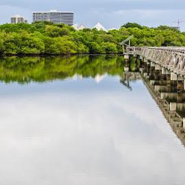 The Bridge by Luis Escobar - Buildings & Architecture Bridges & Suspended Structures