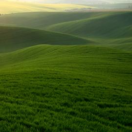 by Irena Brozova - Landscapes Prairies, Meadows & Fields