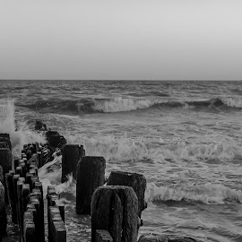 Crash by Laura Gardner - Novices Only Landscapes ( jersey shore, waves, tide, power, ocean, atlantic, nj )