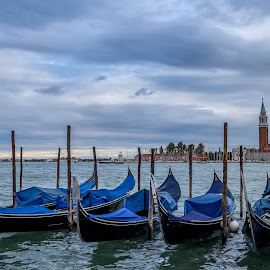 Gondolas by Jose Rojas - Landscapes Waterscapes ( transportation boats, boats, venice, gondolas,  )