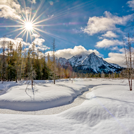 Sun star over the Sawtooths of Idaho by Charles Knowles - Landscapes Mountains & Hills ( clouds, stanley, winter, cold, sawtooth, nature, fog, waterm forest, snow, plants, white, landscape )