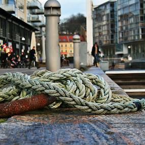 by Tanya Moroza - City,  Street & Park  Street Scenes
