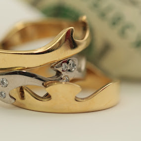by Mckenzie Georges - Artistic Objects Jewelry ( canon, ring, band, diamond, silver, money, gold, yellow, white gold )
