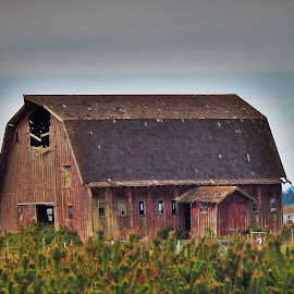 close-up barn  by Lavonne Ripley - Buildings & Architecture Other Exteriors