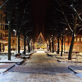 by Vida Jankaitiene - City,  Street & Park  Street Scenes (  )