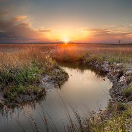 Jekyll Island Salt Marsh by Ben Thomas - Landscapes Prairies, Meadows & Fields ( jekyll, sunset, georgia, marsh, usa, island, salt )