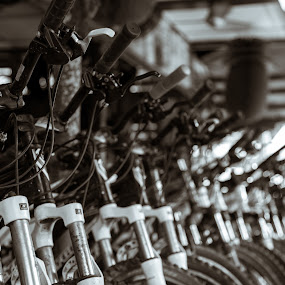 Bicycles by Yi Xuan Lee - Artistic Objects Other Objects ( bicycles, bikes, organised, rental, row )