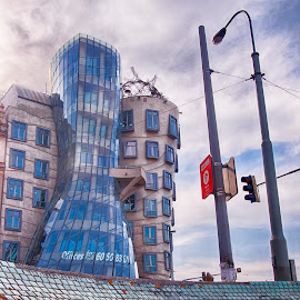 The dancing house by Michal Fokt - Buildings & Architecture Office Buildings & Hotels ( dancing house, prague )