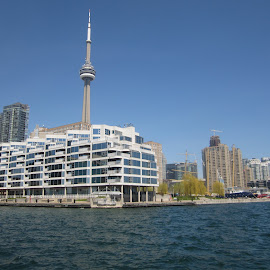 Toronto Waterfront by Carl VanderWouden - City,  Street & Park  Skylines