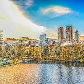 Central Park by Sandra Maldonado - City,  Street & Park  Skylines