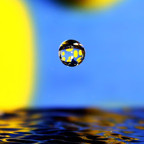 Polka Drop by Adi Suda - Abstract Water Drops & Splashes
