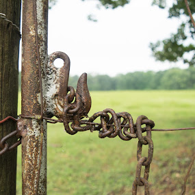 Gate chain and hook by Gwyn Goodrow - Novices Only Objects & Still Life ( farm, fence, hook, latch, chain, landsacpe, rural, country, gate,  )