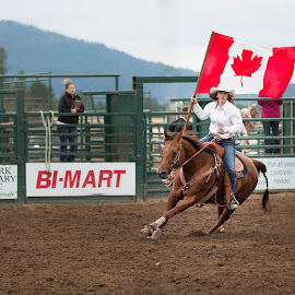Canadian Flag Bearer by Craig Lybbert - Sports & Fitness Rodeo/Bull Riding ( flag, canada, horse, rodeo, cowgirl, respect )