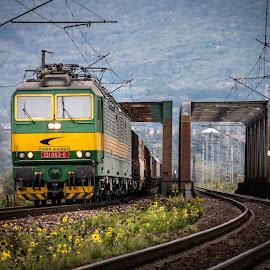 131-063 & 064 by Nagy Attila - Transportation Trains ( zssk train, railway )