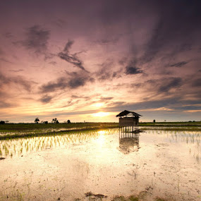 gubug by Rachmat Sandiko - Landscapes Prairies, Meadows & Fields