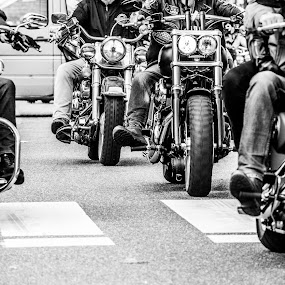 Motorcycle gang by Roger Hamblok - Transportation Motorcycles ( harley davidson, harley, detail, reflection, europe, motorbike, black and white, gauzy, parts, hd, handlebar, petrol tank, mirror, details, leopoldsburg, davidson, harley days, motorcycle, harley-davidson motor company, hazy, misty )