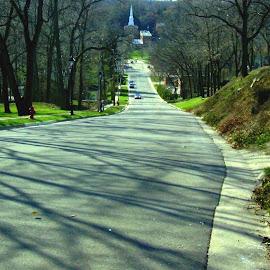 Galena Hillside Street by Kathy Rose Willis - City,  Street & Park  Street Scenes ( hillside, galena, illinois, street, trees, scenic, gray )