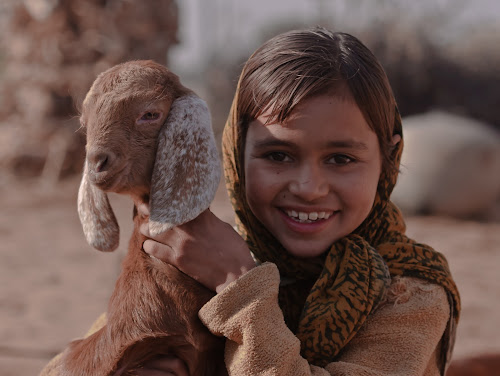 by Avtar Singh - Novices Only Portraits & People ( girl, lamb )