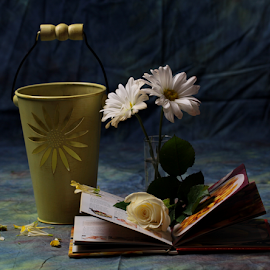 by Dipali S - Artistic Objects Still Life ( candle, rose, petals, white, book, flowers, pot )
