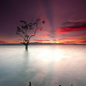 Three against one by Ledon Jasper Samoranos - Landscapes Waterscapes