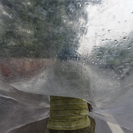 Monsoon Run, Old Delhi 2016 by Manabendra Dey - City,  Street & Park  Street Scenes ( old delhi, monsoon, rickshaw )