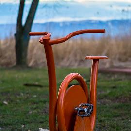 The orange bicycle by Jovan Karamacoski - Transportation Bicycles ( orange, bicycle,  )