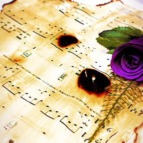 Burned song sheet by Damien Brearley - Artistic Objects Other Objects ( song sheet, music, rose, piano, d6 image, my immortal, evanescence )