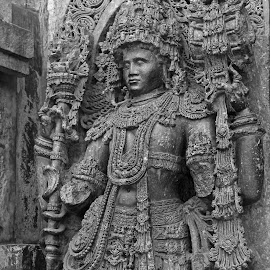 Sculptures of Halabedu by Srivenkata Subramanian - Buildings & Architecture Places of Worship ( bangalore, halabedu, hoysala, india, canon eos, 12th century )
