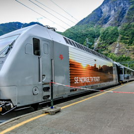 Norwegian Trains by Mandy Hedley - Transportation Trains ( modern, transport, train, flam, norway,  )