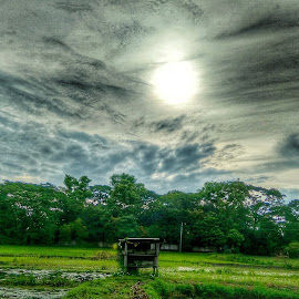 Morning Sun by Himel Barua - Instagram & Mobile Android ( #landscapes, #mobile_photography, #morning )