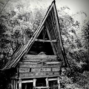 Sopo Batak by Daniel Pasaribu - Buildings & Architecture Public & Historical ( jabu, sopo, batak )