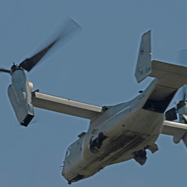 V22 Osprey by Bill Telkamp - Transportation Helicopters ( airpanes, helicopter, airplane, v22, osprey, airshow )