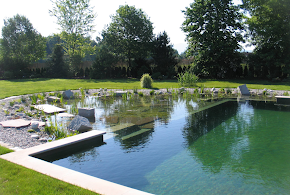 Aqua Paradiso Pool Landscaping in Woking
