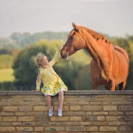 Best Friends by Seamus Bryans - Babies & Children Children Candids