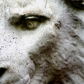Concrete Lion by Martin Stepalavich - Buildings & Architecture Statues & Monuments