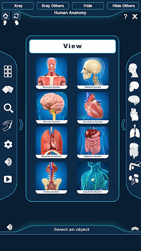 Human Anatomy screenshot for Android