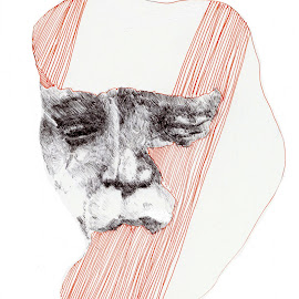 by Stephen Smith - Drawing All Drawing