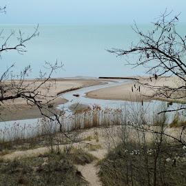 Warren Dunes State Park, MI by John Pobursky - Landscapes Waterscapes ( state_parks, michigan, lake_michigan, great_lakes, warren_dunes_state_park )