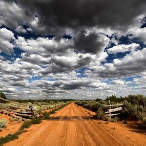 Lonely Cortez Desert Road by Melanie Metz - Landscapes Deserts ( sky, desert, cortez, nature, road )