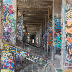 American Flats by Susan Koppel - Buildings & Architecture Decaying & Abandoned ( urban, graffiti, art, american flats, abandoned )