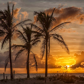 Sunrise on the Beach by Jay Stout - Landscapes Waterscapes (  )