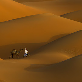 Tour on the Golden Hills by Adeeb Alani - Digital Art Things ( #nikon #canon #nature #desert )