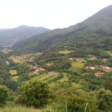 Castañedo