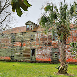Laura Plantation by Ron Olivier - Buildings & Architecture Decaying & Abandoned