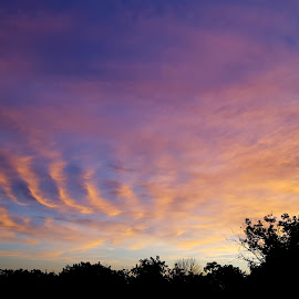 by Linda Murrie - Landscapes Cloud Formations (  )